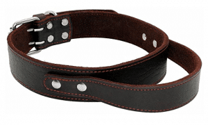 Pet Artist Genuine Leather Dog Collar for Walking