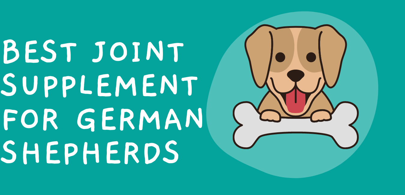 Best Joint Supplements for German Shepherds