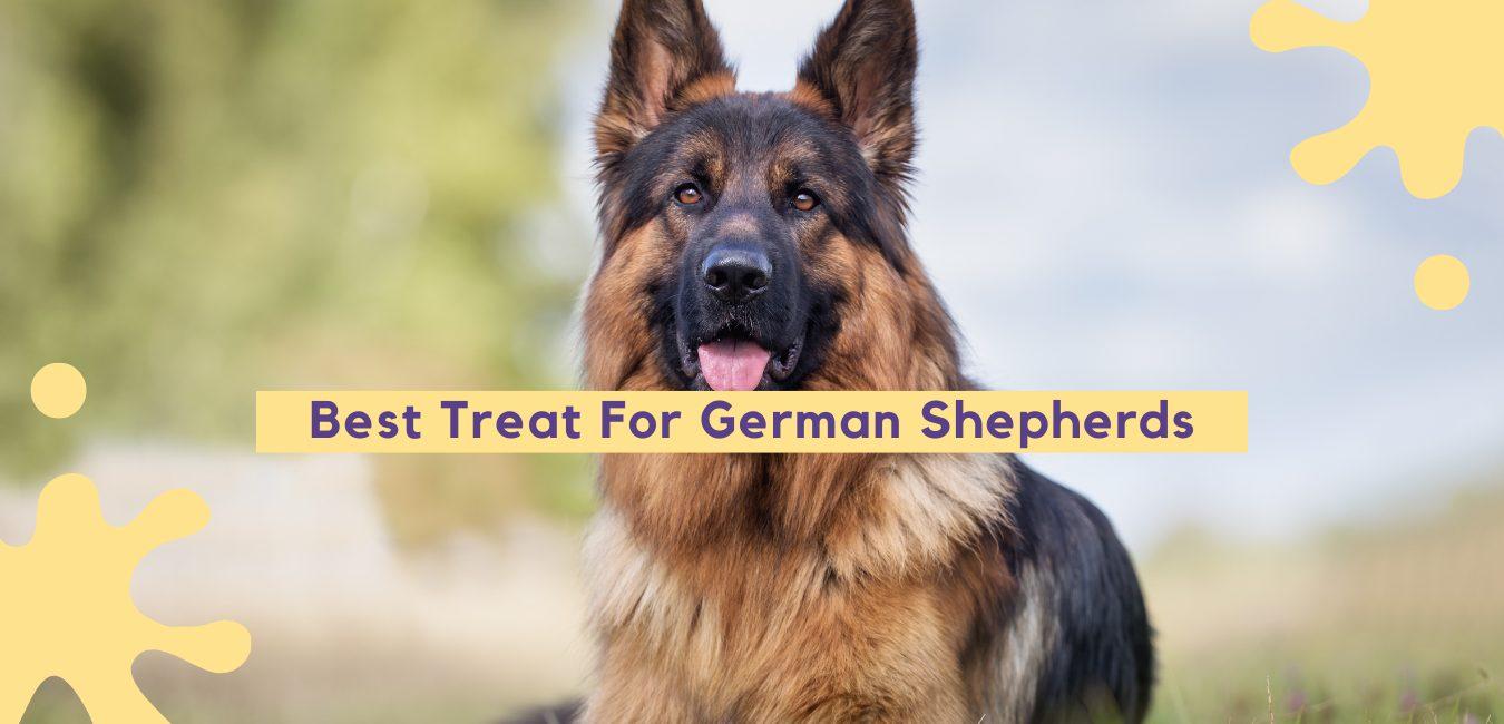 Best Treats For German Shepherds